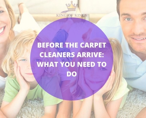 best carpet cleaner oh